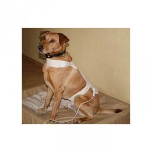Bioresonantie Stofdetector Grote honden